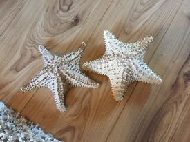 **QUICK SALE** Set of two starfish
