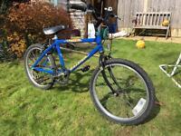 Raleigh Fizzer boy's bike