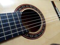 Ana Maria Espanosa Flamenco Guitar 2014