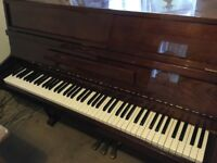 Young Chang U109 modern upright piano + stool, excellent condition