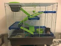 Syrian Hamster plus cage and accessories