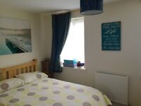 Spacious Double Ensuite Room in Great Location