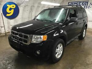 2009 Ford Escape XLT 4WD*Same Day Approvals Available!!