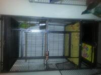 I am selling my green ringneck parrot with cage.