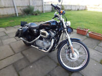 Harley-Davidson XL883C SPORTSTER custom