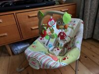 Fisher-Price Woodsy Friends Comfy Time Bouncer - Calming Vibration - Musical toys