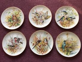 Connaught Collection Bone China Plates