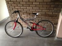 1 adult bike and 3 kids bikes for sale