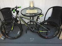 Boys Raleigh Mountain Bike - £30 No Offers