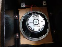 10 inch Celestion Guitar Speakers and DIY Cabs