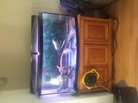 72 Gallon bow front aquarium