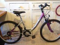 Girls Probike Miami Bicycle
