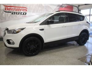 2017 Ford Escape SE 2.0 Ecoboost AWD