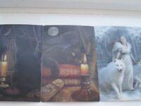 lisa parker & anne stokes fantasy 3d postcards X3