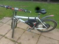 Electric large mens mountain bike