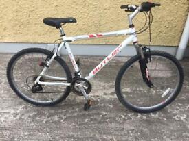 Adult Claud butler bike