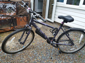 "Bike (adult, purple, 17"" frame). Pick up only"