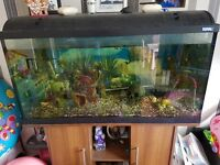 Large tank and unit for sale