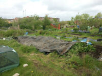 Allotment Share on offer