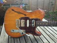 Fret-King Country Squire. (Tele, Strat,)