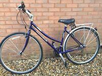 Ladies Purple Ridgeback Opera Bike, 26 inch wheel