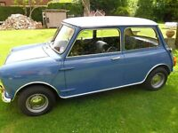 Classic Mini, Austin, Rover, Project wanted