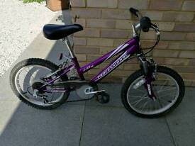 """Jilly Professional 18"""" Girls Bike, 6 speed and front suspension"""