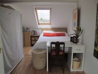 Large, sunny en-suite loft room available in Castle Hill area