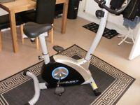 rogerblack silver medal magnetic bike