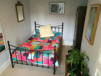 Light and spacious double room in friendly flat share