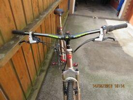 Custom mountain bike for sale