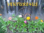 venture4us
