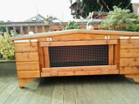 "rabbit hutch 48""wide from £35.00 7days up from hampden park all worth viewing"
