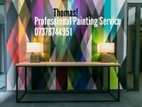 Thomas and Tony Professional painting Service!!! 07376744951