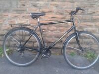 Freespirit ALBANY Large Adults Traditional Hybrid Commuter Touring Road Bike