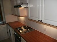 2 Bed Flat Strathmartine Rd. Near Kings Cross Hospital, Tayside Contracts, Tesco