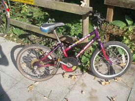KIDS (age 5-8)RALEIGH MEGA 20inch wheeled Bike