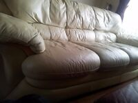 Leather Sofa Suit FREE