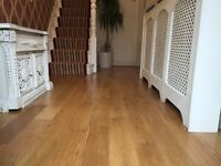 South London Experienced Painter Decorator Carpenter Laminate Flooring Handyman call free quote