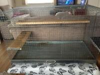 Pets at home Degu cage