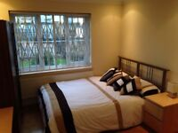 STREATHAM 1 Xdouble room and 2x single rooms in my house