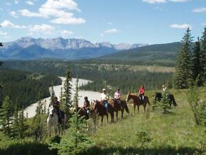 Guided Horseback Trail Rides Near Jasper National Park Edmonton Area image 1
