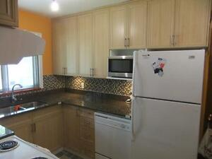 Kitchen cabinets buy sell items tickets or tech in for Kitchen cabinets kijiji