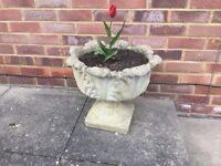 Tulip Shaped Large Concrete Planter
