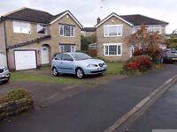 2004 Seat Ibiza 1.2 SX 3 Door*** Mot** Alloys** Cheap Insurance**Looks Great*