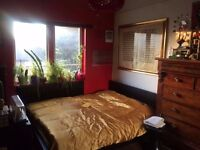 Large Double Room in Gay London Fields Home