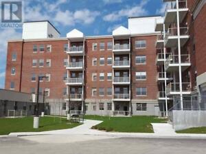 969 Queen ST E # 104 Sault Ste. Marie, Ontario