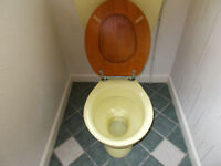 RETRO PRIMROSE YELLOW TOILET SUITE