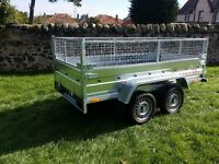 Car trailer twin axle-build, side and mesh 8.7 x 4.1
