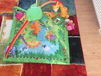 Immaculate rainforest playmat